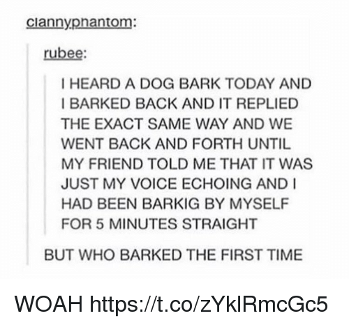 Time, Today, and Voice: ciannypnantom:  rubee  I HEARD A DOG BARK TODAY AND  I BARKED BACK AND IT REPLIED  THE EXACT SAME WAY AND WE  WENT BACK AND FORTH UNTIL  MY FRIEND TOLD ME THAT IT WAS  JUST MY VOICE ECHOING AND I  HAD BEEN BARKIG BY MYSELF  FOR 5 MINUTES STRAIGHT  BUT WHO BARKED THE FIRST TIME WOAH https://t.co/zYklRmcGc5