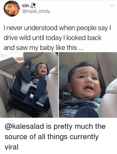 Funny, Saw, and Drive: cin  @royal_cind  I never understood when people say l  drive wild until today I looked back  and saw my baby like this.. @kalesalad is pretty much the source of all things currently viral