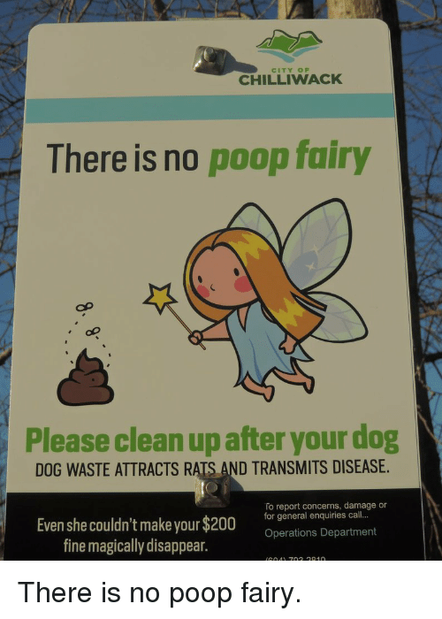 City Of Chilliwack There Is No Poop Fairy Please Clean Upafter Your