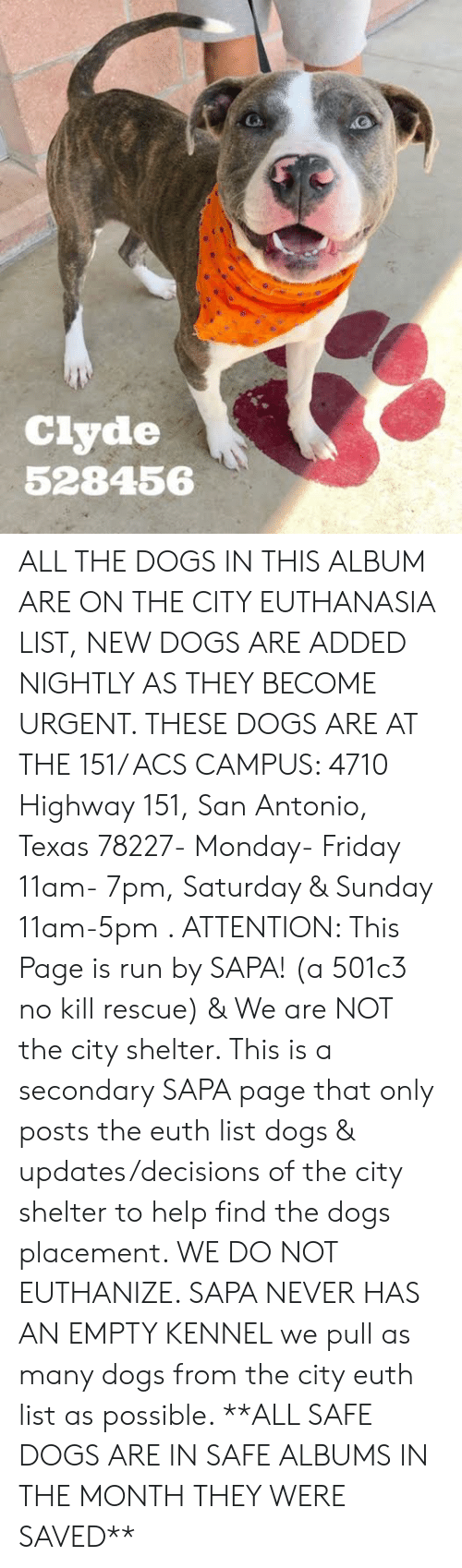 Dogs, Friday, and Memes: Ciyde  528456 ALL THE DOGS IN THIS ALBUM ARE ON THE CITY EUTHANASIA LIST, NEW DOGS ARE ADDED NIGHTLY AS THEY BECOME URGENT.  THESE DOGS ARE AT THE 151/ ACS CAMPUS: 4710 Highway 151, San Antonio, Texas 78227- Monday- Friday 11am- 7pm, Saturday & Sunday 11am-5pm  .                                                                                                                                                                                                                                                     ATTENTION: This Page is run by SAPA! (a 501c3 no kill rescue) & We are NOT the city shelter. This is a secondary SAPA page that only posts the euth list dogs & updates/decisions of the city shelter to help find the dogs placement. WE DO NOT EUTHANIZE.  SAPA NEVER HAS AN EMPTY KENNEL we pull as many dogs from the city euth list as possible.      **ALL SAFE DOGS ARE IN SAFE ALBUMS IN THE MONTH THEY WERE SAVED**
