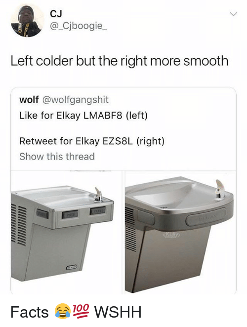 Facts, Memes, and Smooth: CJ  @ Cjboogie_  Left colder but the right more smooth  wolf @wolfgangshit  Like for Elkay LMABF8 (left)  Retweet for Elkay EZS8L (right)  Show this thread Facts 😂💯 WSHH