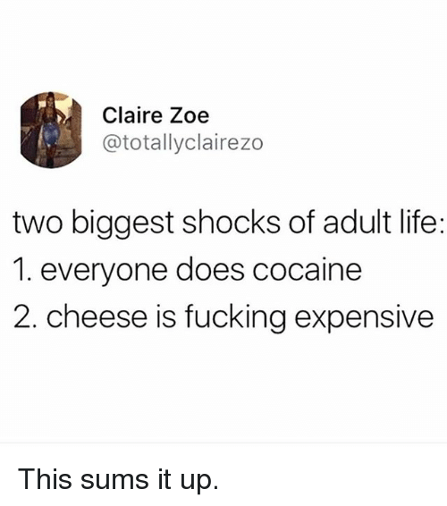 Fucking, Life, and Memes: Claire Zoe  @totallyclairezo  two biggest shocks of adult life:  1. everyone does cocaine  2. cheese is fucking expensive This sums it up.
