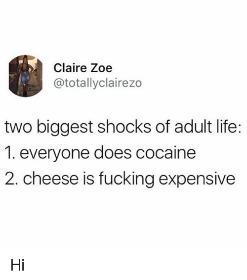 Fucking, Life, and Memes: Claire Zoe  @totallyclairezo  two biggest shocks of adult life:  1. everyone does cocaine  2. cheese is fucking expensive Hi