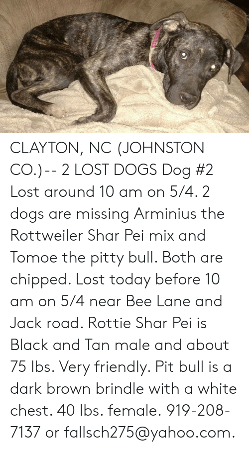 Dogs, Memes, and Lost: CLAYTON, NC (JOHNSTON CO.)-- 2 LOST DOGS  Dog #2  Lost around 10 am on 5/4. 2 dogs are missing Arminius the Rottweiler Shar Pei mix and Tomoe the pitty bull. Both are chipped. Lost today before 10 am on 5/4 near Bee Lane and Jack road. Rottie Shar Pei is Black and Tan male and about 75 lbs. Very friendly. Pit bull is a dark brown brindle with a white chest. 40 lbs. female. 919-208-7137 or fallsch275@yahoo.com.