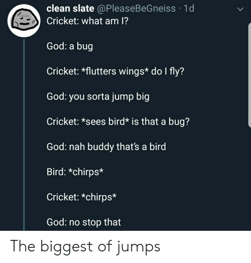 God, Cricket, and Wings: clean slate @PleaseBeGneiss 1d  Cricket: what am 1?  God: a bug  Cricket: *flutters wings* do I fly?  God: you sorta jump big  Cricket: *sees bird* is that a bug?  God: nah buddy thats a bird  Bird: *chirps*  Cricket: *chirps*  God: no stop that The biggest of jumps
