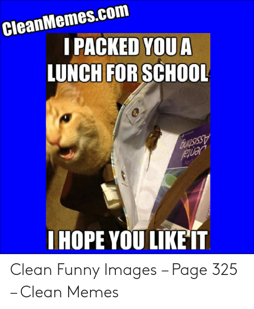 Clean Memes 03 20 2020 Evening In 2020 With Images Stupid