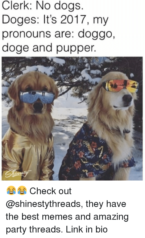 Doge, Dogs, and Funny: Clerk: No dogs  Doges: It's 2017, my  pronouns are: doggo,  doge and pupper 😂😂 Check out @shinestythreads, they have the best memes and amazing party threads. Link in bio