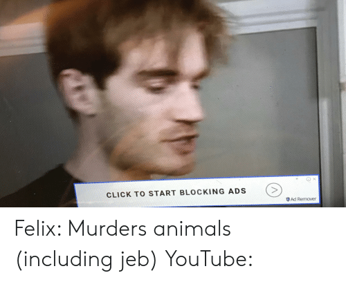 Animals, Click, and youtube.com: CLICK TO START BLOCKING ADS  Ad Remover Felix: Murders animals (including jeb) YouTube: