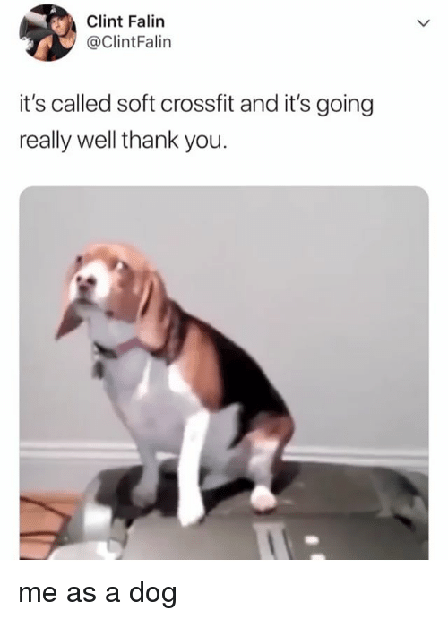 Thank You, Crossfit, and Relatable: Clint Falin  @ClintFalin  it's called soft crossfit and it's going  really well thank you. me as a dog