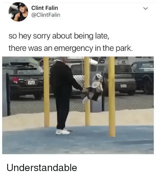 Memes, Sorry, and 🤖: Clint Falin  @ClintFalin  so hey sorry about being late,  there was an emergency in the park. Understandable