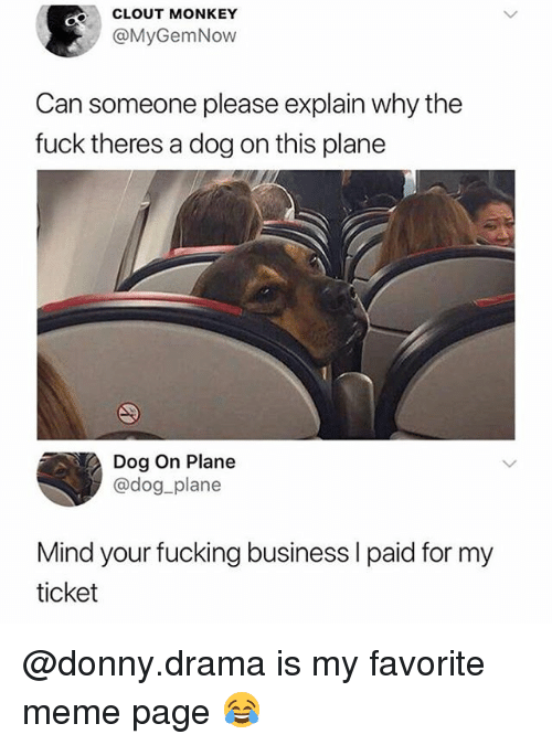 Fucking, Meme, and Business: CLOUT MONKEY  @MyGemNow  Can someone please explain why the  fuck theres a dog on this plane  Dog On Plane  @dog plane  Mind your fucking business I paid for my  ticket @donny.drama is my favorite meme page 😂