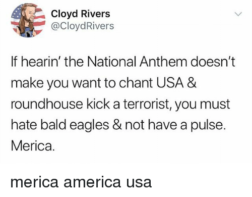 America, Philadelphia Eagles, and Memes: Cloyd Rivers  @CloydRivers  If hearin' the National Anthem doesn't  make you want to chant USA &  roundhouse kick a terrorist, you must  hate bald eagles & not have a pulse.  Merica. merica america usa