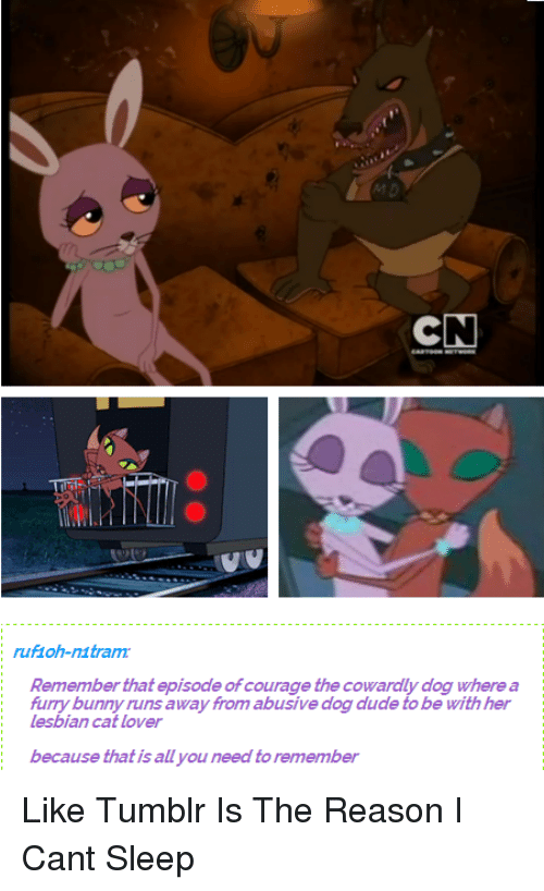 courage the cowardly dog cat