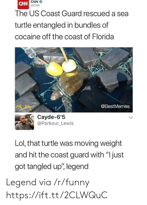 "cnn.com, Funny, and Lol: CNN  @CNN  The US Coast Guard rescued a sea  turtle entangled in bundles of  cocaine off the coast of Florida  @BestMemes  Cayde-6'5  @Parkour_Lewis  Lol, that turtle was moving weight  and hit the coast guard with ""just  got tangled up', legend Legend via /r/funny https://ift.tt/2CLWQuC"