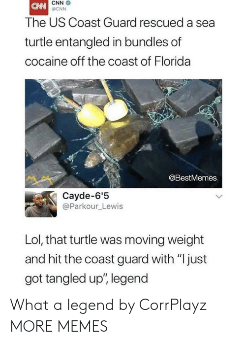 "cnn.com, Dank, and Lol: CNN  @CNN  The US Coast Guard rescued a sea  turtle entangled in bundles of  cocaine off the coast of Florida  @BestMemes  Cayde-6'5  @Parkour_Lewis  Lol, that turtle was moving weight  and hit the coast guard with ""just  got tangled up', legend What a legend by CorrPlayz MORE MEMES"