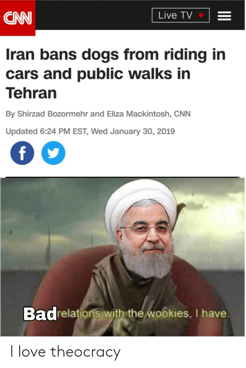 CNN Live TV Iran Bans Dogs From Riding in Cars and Public Walks in