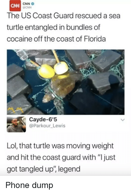 "cnn.com, Lol, and Phone: CNN  OCNN  The US Coast Guard rescued a sea  turtle entangled in bundles of  cocaine off the coast of Florida  Cayde-6'5  @Parkour_Lewis  Lol, that turtle was moving weight  and hit the coast guard with ""ljust  got tangled up, legend Phone dump"