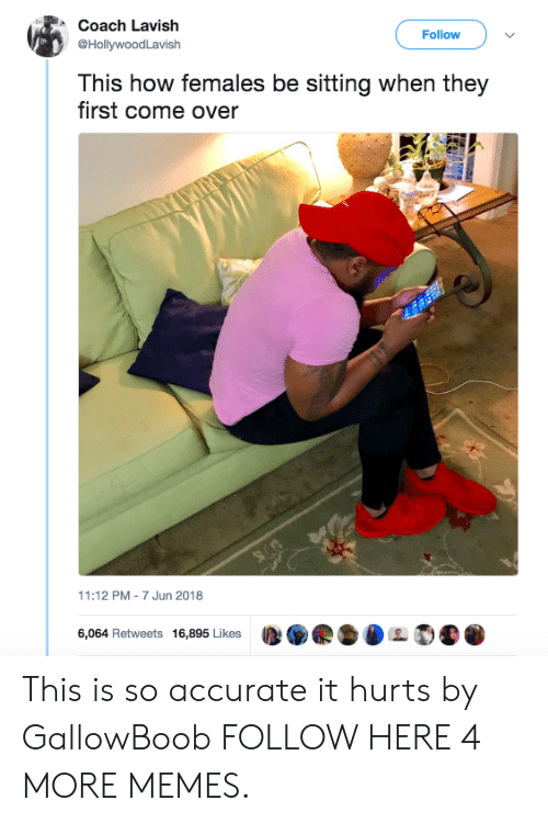 Come Over, Dank, and Memes: Coach Lavish  @HollywoodLavish  Follow>  This how females be sitting when they  first come over  11:12 PM-7 Jun 2018  6,064 Retweets 16,895 Likes  D.県·DL  . This is so accurate it hurts by GallowBoob FOLLOW HERE 4 MORE MEMES.