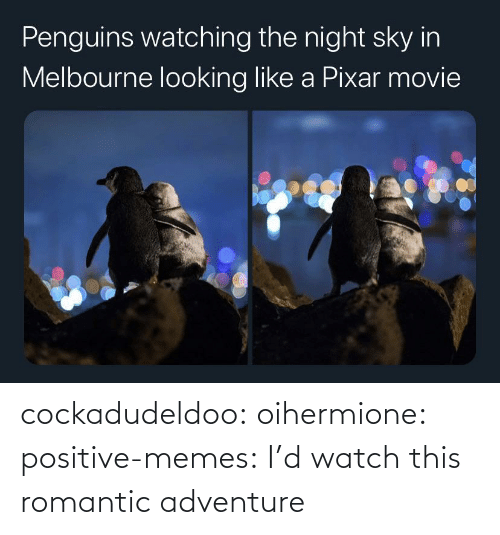 Memes, Tumblr, and Blog: cockadudeldoo: oihermione:   positive-memes: I'd watch this romantic adventure