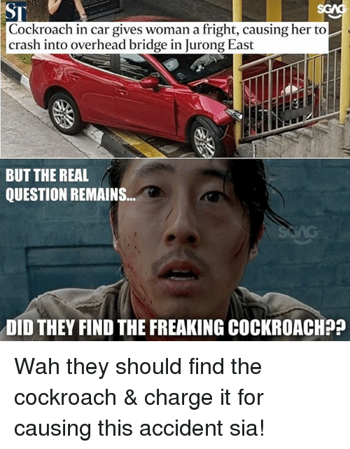 Memes, The Real, and 🤖: Cockroach in car gives woman a fright, causing her to  crash into overhead bridge in Jurong East  BUT THE REAL  QUESTION REMAINS..  DID THEY FIND THE FREAKING COCKROACH?? Wah they should find the cockroach & charge it for causing this accident sia!