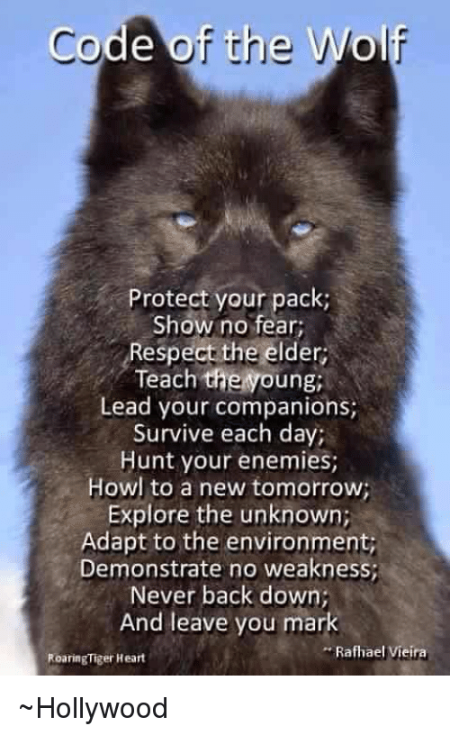 Code Of The Wolf Protect Your Pack Show No Fear Respect The Elder Teach Thenoung Lead Your