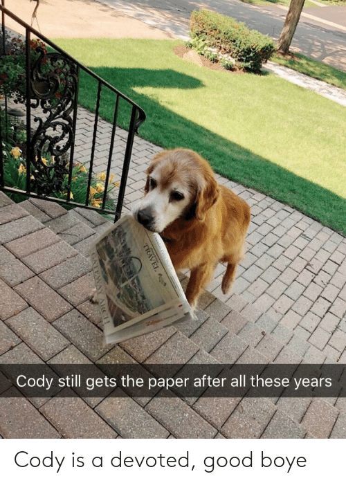 Good, Paper, and All: Cody still gets the paper after all these years Cody is a devoted, good boye