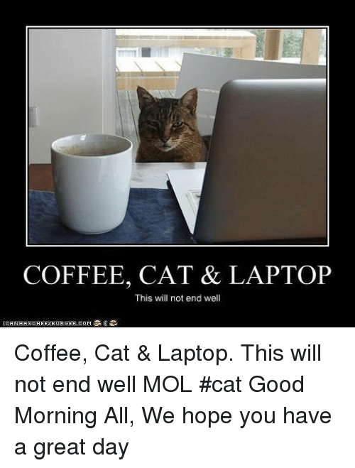 coffee cat laptop this will not end well coffee 17563589 coffee cat & laptop this will not end well coffee cat & laptop