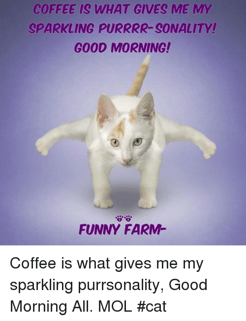 Coffee Is What Gives Me My Sparkling Purrrr Sonality Good Morning