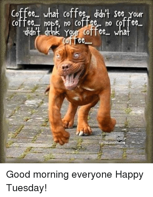 Good Morning Everyone Happy Tuesday : Coffee what didn t see your coffet nopt no coffrte