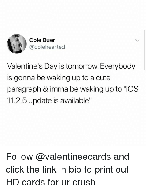 """Click, Crush, and Cute: Cole Buer  @colehearted  Valentine's Day is tomorrow. Everybody  is gonna be waking up to a cute  paragraph & imma be waking up to """"ios  11.2.5 update is available"""" Follow @valentineecards and click the link in bio to print out HD cards for ur crush"""