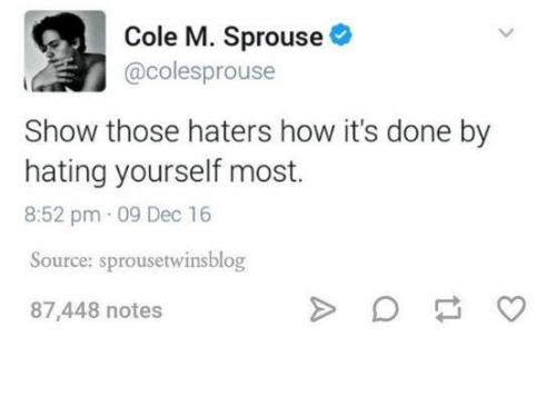 Humans of Tumblr, How, and Source: Cole M. Sprouse  @colesprouse  Show those haters how it's done by  hating yourself most.  8:52 pm.09 Dec 16  Source: sprousetwinsblog  87,448 notes