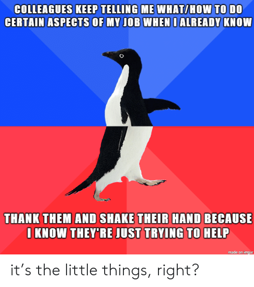 Help, How To, and Imgur: COLLEAGUES KEEP TELLING ME WHAT/HOW TO DO  CERTAIN ASPECTS OF MY JOB WHEN I ALREADY KNOW  THANK THEM AND SHAKE THEIR HAND BECAUSE  I KNOW THEY'RE JUST TRYING TO HELP  made on imgur it's the little things, right?