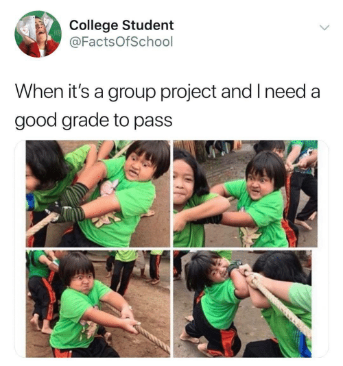 College, Good, and Student: College Student  @FactsOfSchool  When it's a group project and I need a  good grade to pass