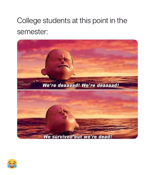 College, This, and Dead: College students at this point in the  semester:  We're deaaaad! We're deaaaad  We survived but we're dead! 😂