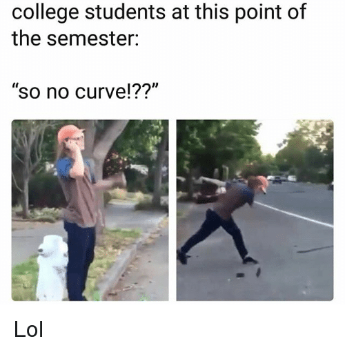 """College, Curving, and Funny: college students at this point of  the semester:  """"so no curve!??"""" Lol"""