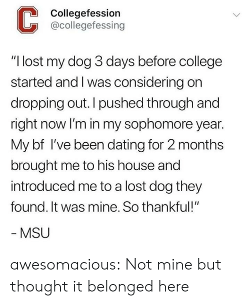 "College, Dating, and Tumblr: Collegefession  @collegefessing  ""I lost my dog 3 days before college  started and I was considering on  dropping out. I pushed through and  right now lI'm in my sophomore year.  My bf I've been dating for 2 months  brought me to his house and  introduced me to a lost dog they  found. It was mine. So thankful!""  MSU awesomacious:  Not mine but thought it belonged here"