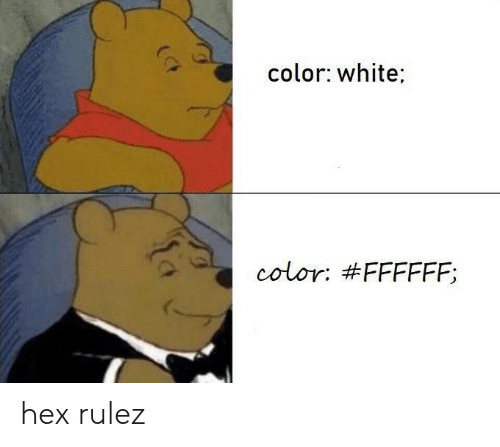 White, Color, and Hex: color: white  color: hex rulez