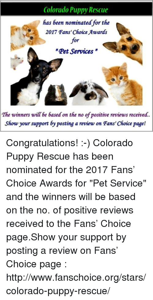 Colorado Puppy Rescue Has Been Nominated For The 2017 Fans Choice