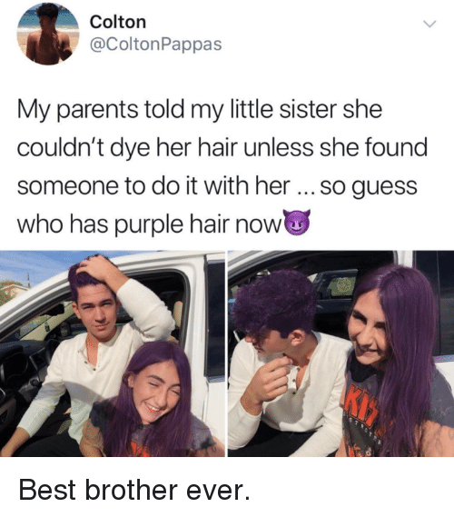 Parents, Best, and Guess: Colton  @ColtonPappas  My parents told my little sister she  couldn't dye her hair unless she found  someone to do it with her so guess  who has purple hair now <p>Best brother ever.</p>