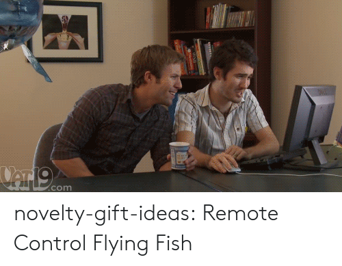 Tumblr, Control, and Blog: .cOm novelty-gift-ideas:    Remote Control Flying Fish