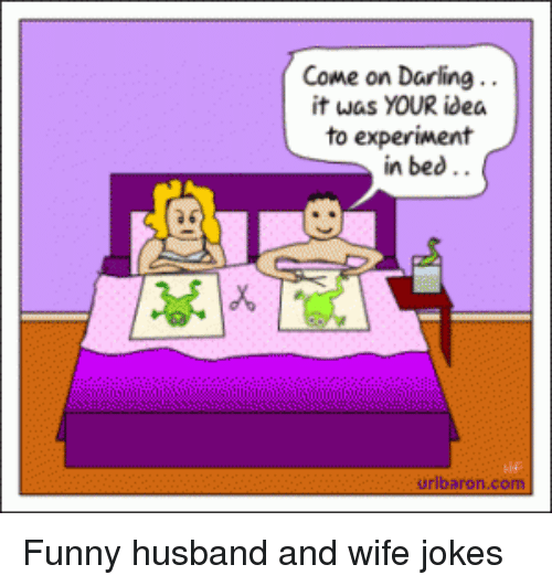 funny jokes and husband come on darling it was your idea to experiment