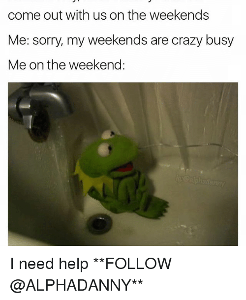 Crazy, Memes, and Sorry: come out with us on the weekends  Me: sorry, my weekends are crazy busy  Me on the weekend I need help **FOLLOW @ALPHADANNY**