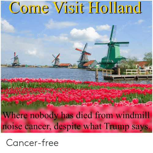 Come Visit FHolland Where Nobody Has Died From Windmill ...