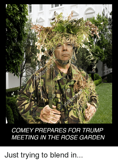 Trump Blames Fbi Russia And Democrats For Fake 35 Page: Funny Comey Memes Of 2017 On Me.me