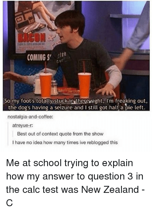 Dogs, How Many Times, and Memes: COMING S  So my foot s totally stuck tntherernight, im freaking out,  the dog's having a seizure and I still got half a pie left.  nostalgia-and-coffee:  atreyue-r:  Best out of context quote from the show  I have no idea how many times ive reblogged this Me at school trying to explain how my answer to question 3 in the calc test was New Zealand -C