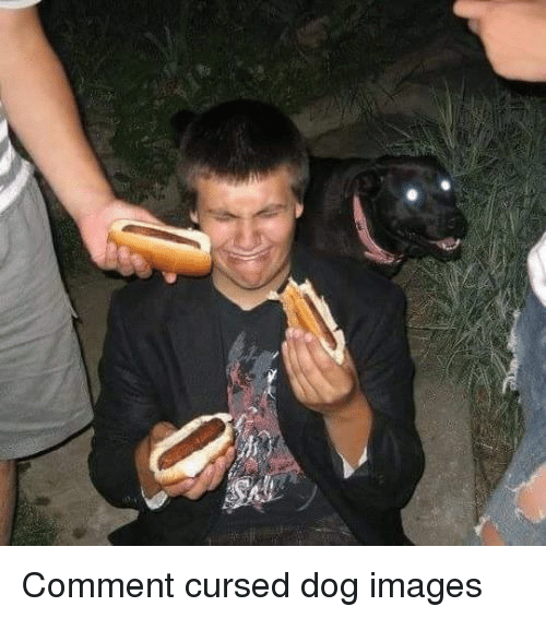Dog Images