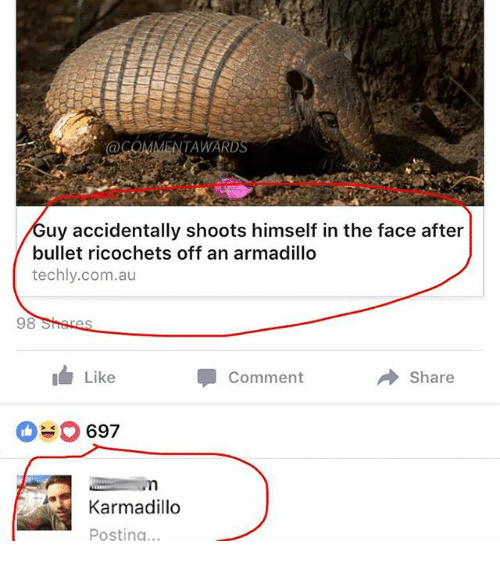 Funny, Com, and Armadillo: @COMMENTAWAR  uy accidentally shoots himself in the face after  bullet ricochets off an armadillo  techly.com.au  98  Like  Comment  Share  697  Karmadillo  Posting