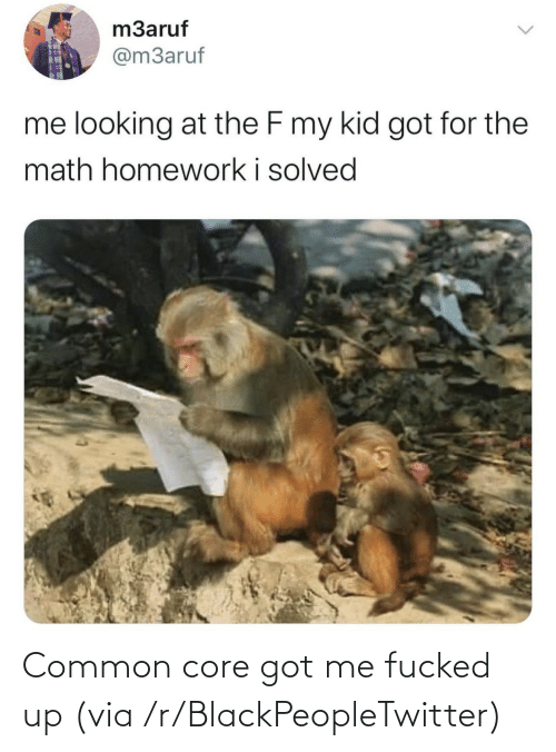 Blackpeopletwitter, Common, and Got: Common core got me fucked up (via /r/BlackPeopleTwitter)