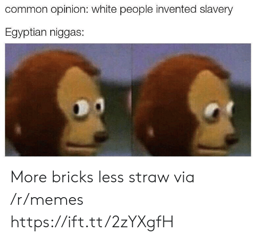 Memes, White People, and Common: common opinion: white people invented slavery  Egyptian niggas: More bricks less straw via /r/memes https://ift.tt/2zYXgfH
