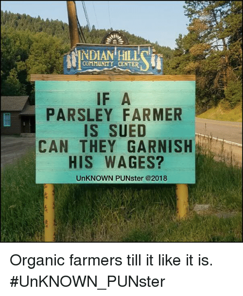 Community, Memes, and Sued: COMMUNITY CENTER  IF A  PARSLEY FARMER  IS SUED  CAN THEY GARNISH  HIS WAGES?  UnKNOWN PUNster @2018 Organic farmers till it like it is.  #UnKNOWN_PUNster